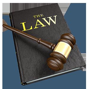 תחומי משפט שונים